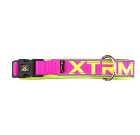 Collar Perros Fucsia X-Trm Neon Flash