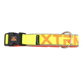 Collar Perros Amarillo X-Trm Neon Flash