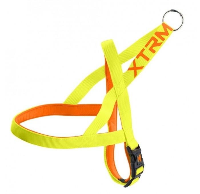 Arnés Amarillo para Perros X-Trm Neon Flash
