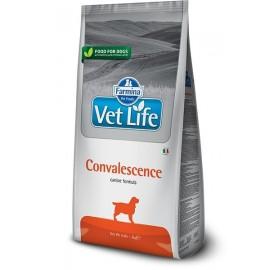 Farmina Vet Life Dog Convalescence
