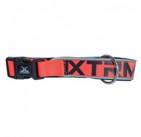 Collar Perros Naranja X-Trm Neon Flash