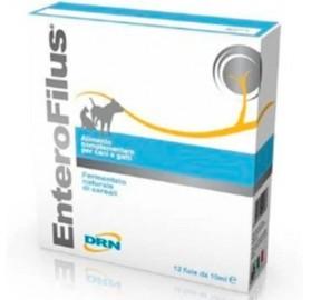 Enterofilus Problemas Estomacales Fatro
