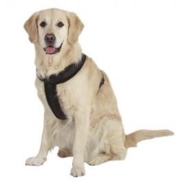 Arnés para perros Cross Negro
